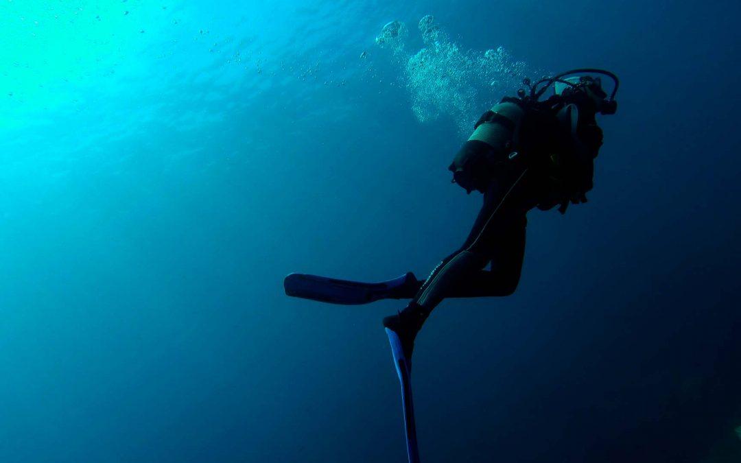 Bautizo de buceo y snorkel nocturno